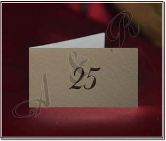 25 Italian 25th Anniversary Favor Tags